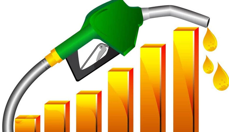 پٹرول کی قیمت خرید 48 روپے 54 پیسے ہے، عمر ایوب