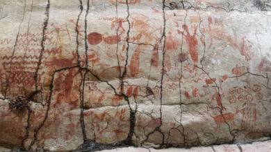 ایمیزون کے جنگلات میں 12 ہزار سال پرانی پینٹنگز دریافت